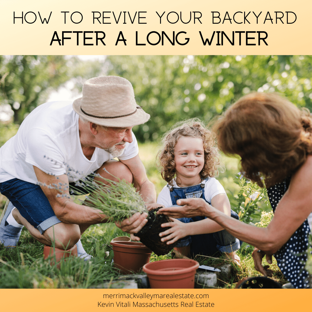 revive your backyard after winter- Tewksbury MA Real Estate